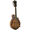 Washburn M118SW Vintage Finish