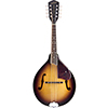 GretschG9300 Mandolin
