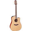 Takamine P3DC Pro Series 3 Dreadnought