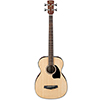 Ibanez PCBE12 - Open Pore Natural