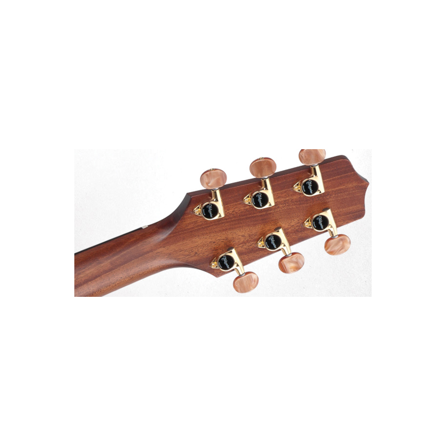 Takamine GB7C  Rear Headstock