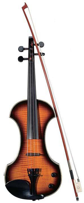 Violin View
