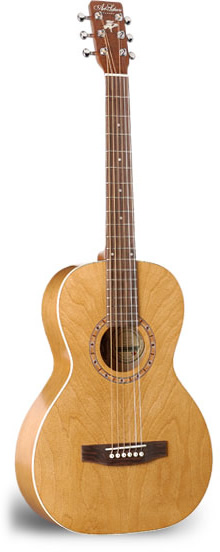 AMI Steel String - Almond with Gigbag
