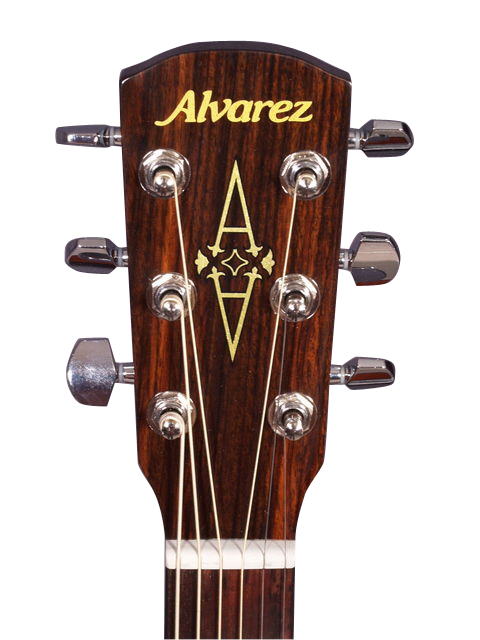 Alvarez RD210 Dreadnought Headstock