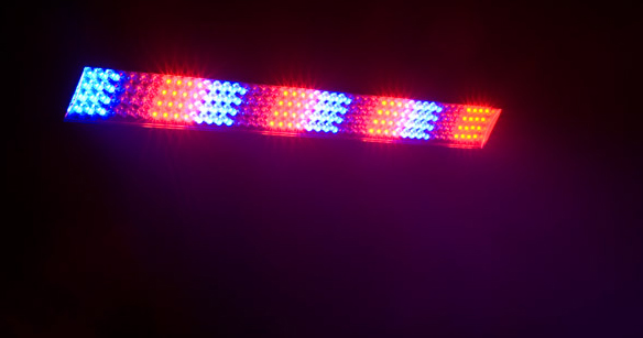 Chauvet DJ COLORstrip™ Mini Effects 3