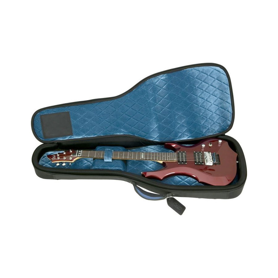 Case Opened, With Guitar