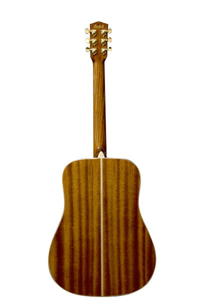 Bedell TB-18-G Dreadnought Acoustic Guitar Rear View