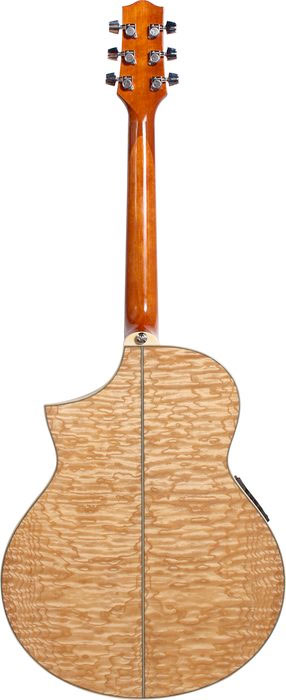 Ibanez EW20ASE - Natural Rear View