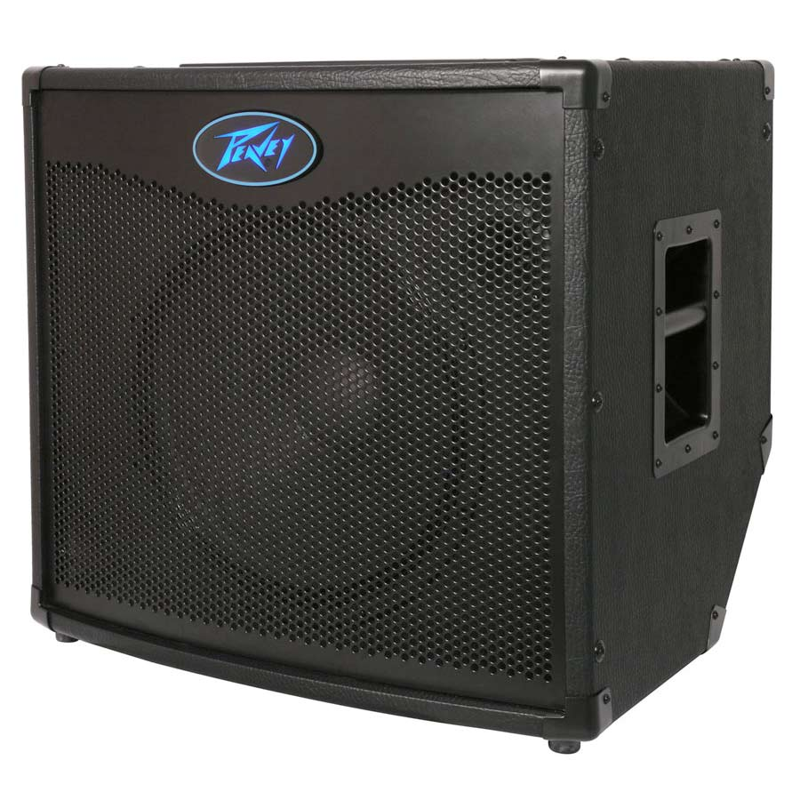 Peavey Tour TNT 115 Angled View