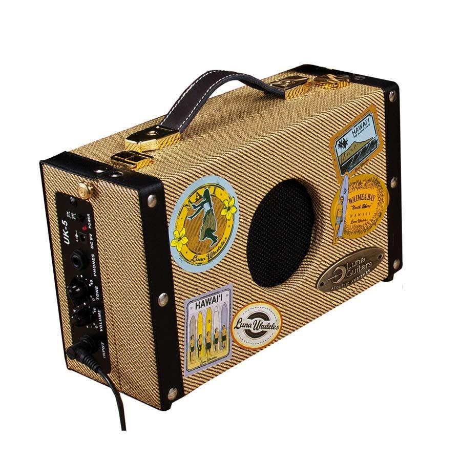 Ukulele Suitcase Amp