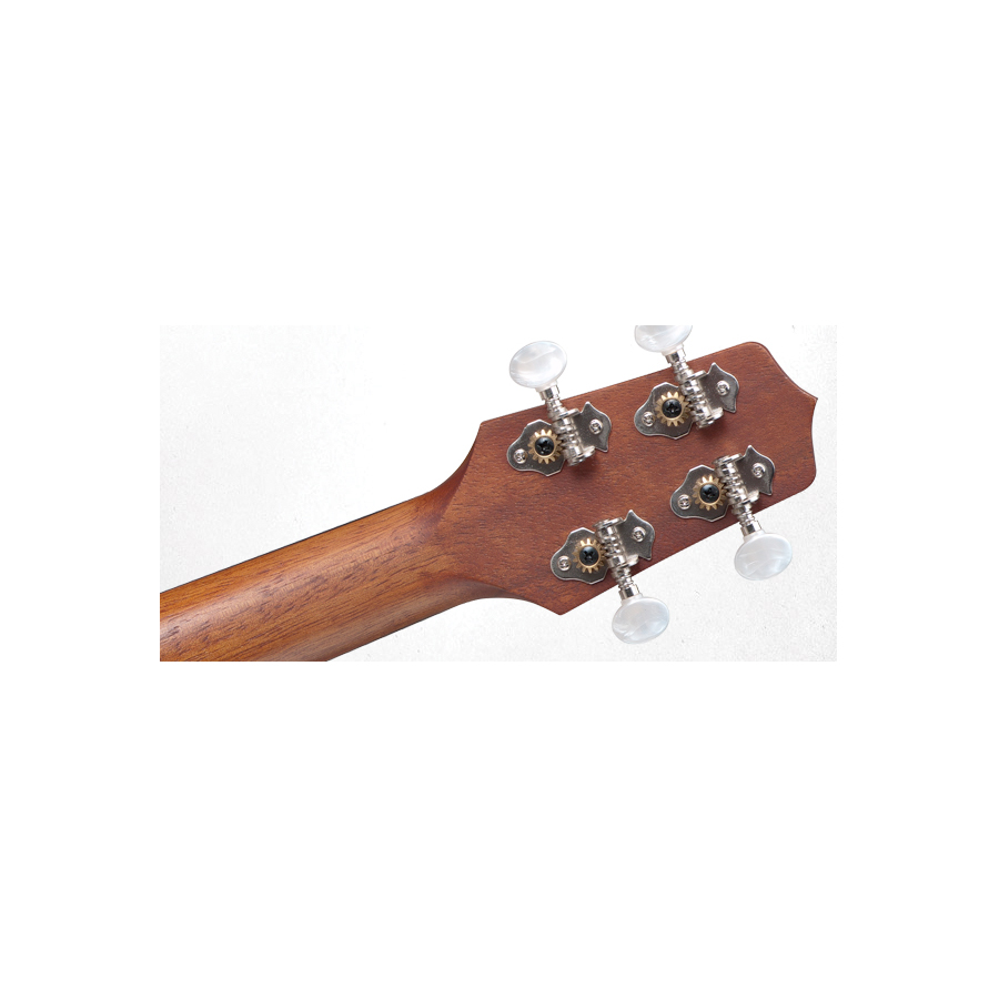 Takamine GUS1 Rear Headstock