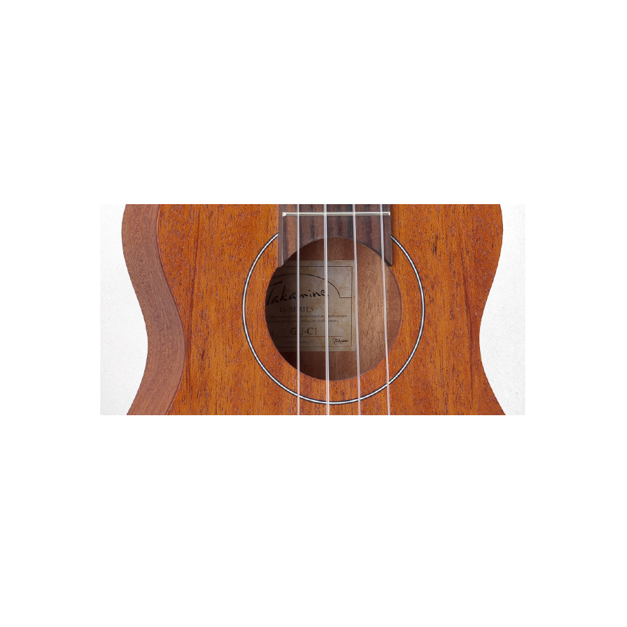 Takamine GUC1 Soundhole Detail