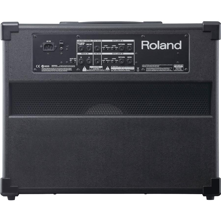 Roland GA-112Rear View