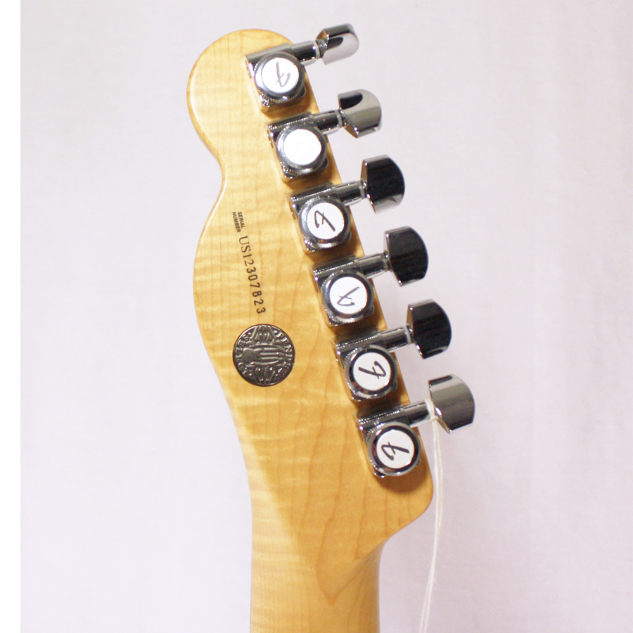 Rear Headstock Detail