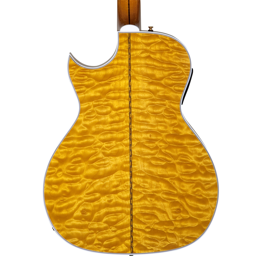 Guild Doyle Dykes Signature Model Rear View