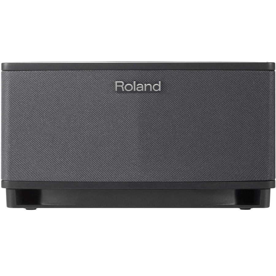 Roland Cube Lite Black Rear View