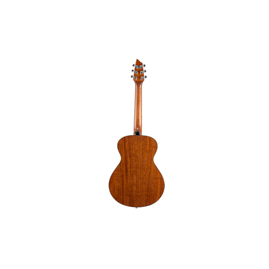 Breedlove Passport C200/SMe-T Rear View