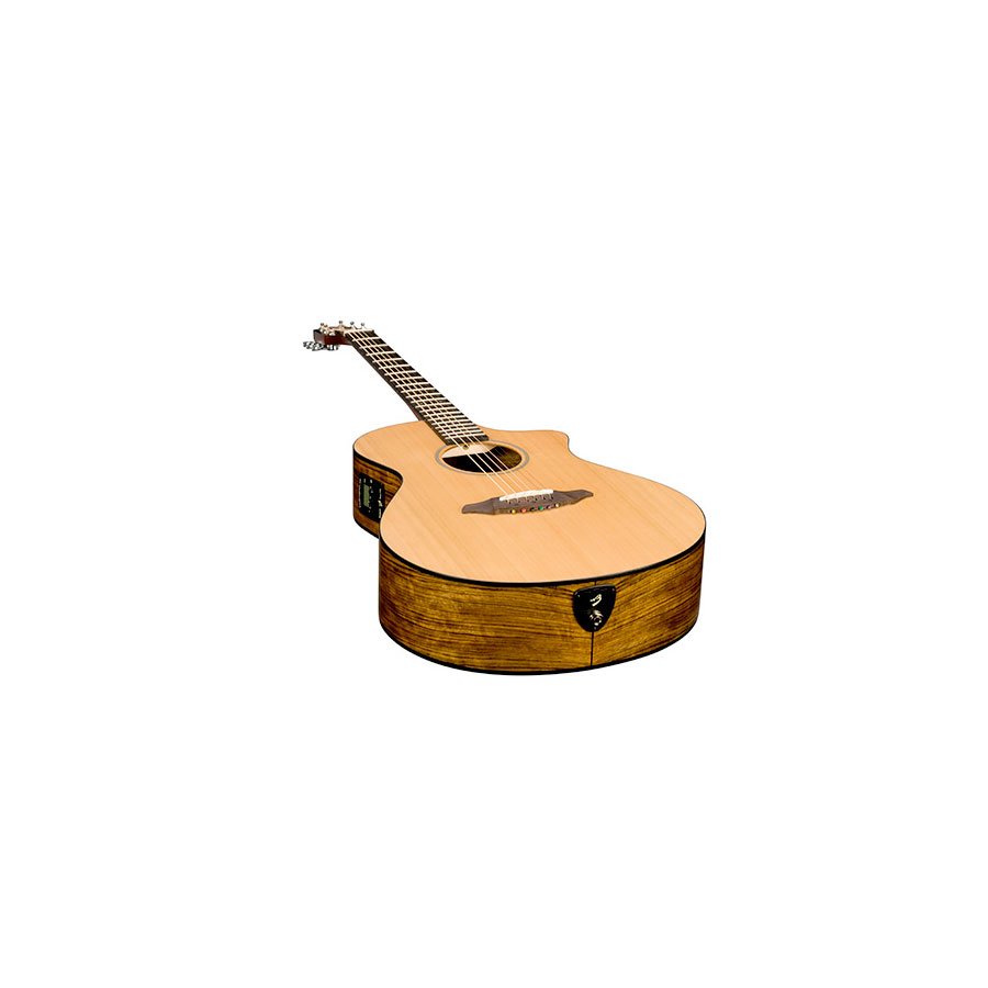 Breedlove Passport C250/COe Angled View