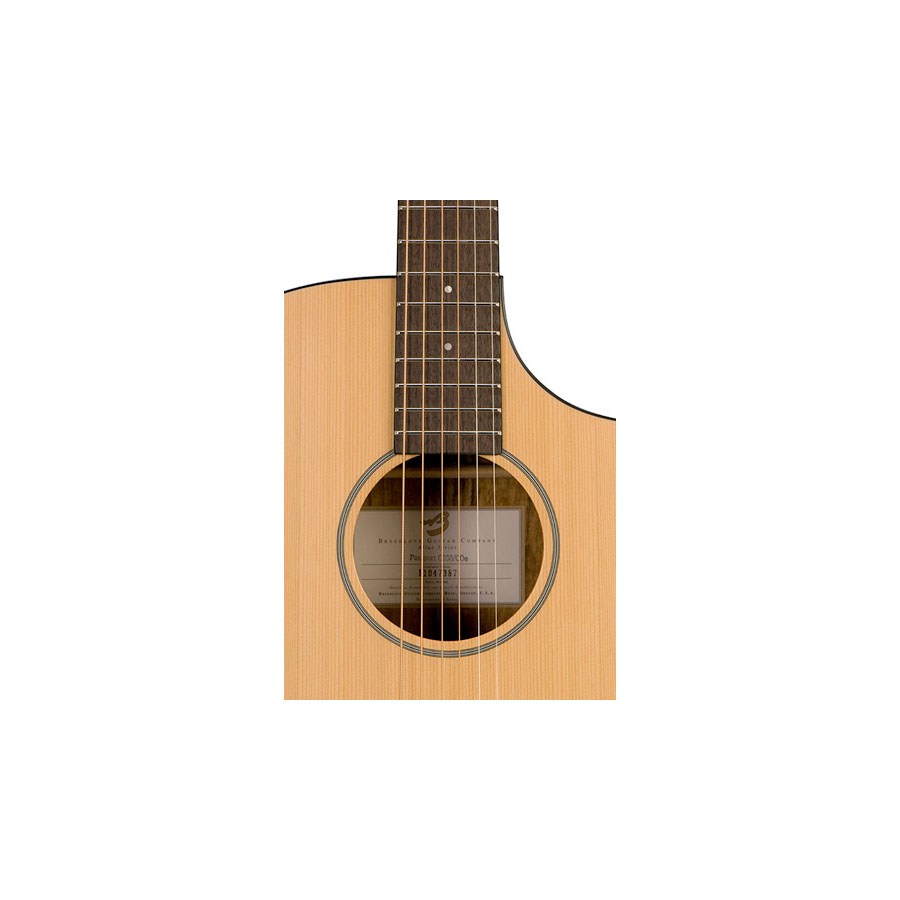Breedlove Passport C250/COe Soundhold