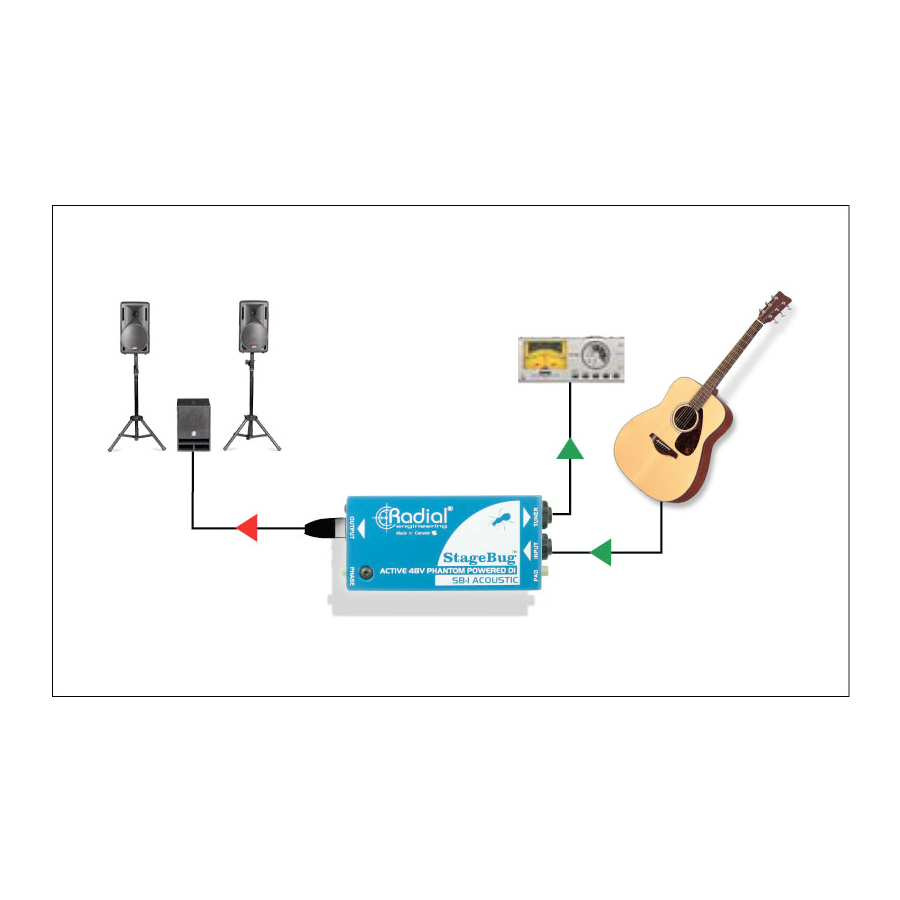Acoustic guitar live