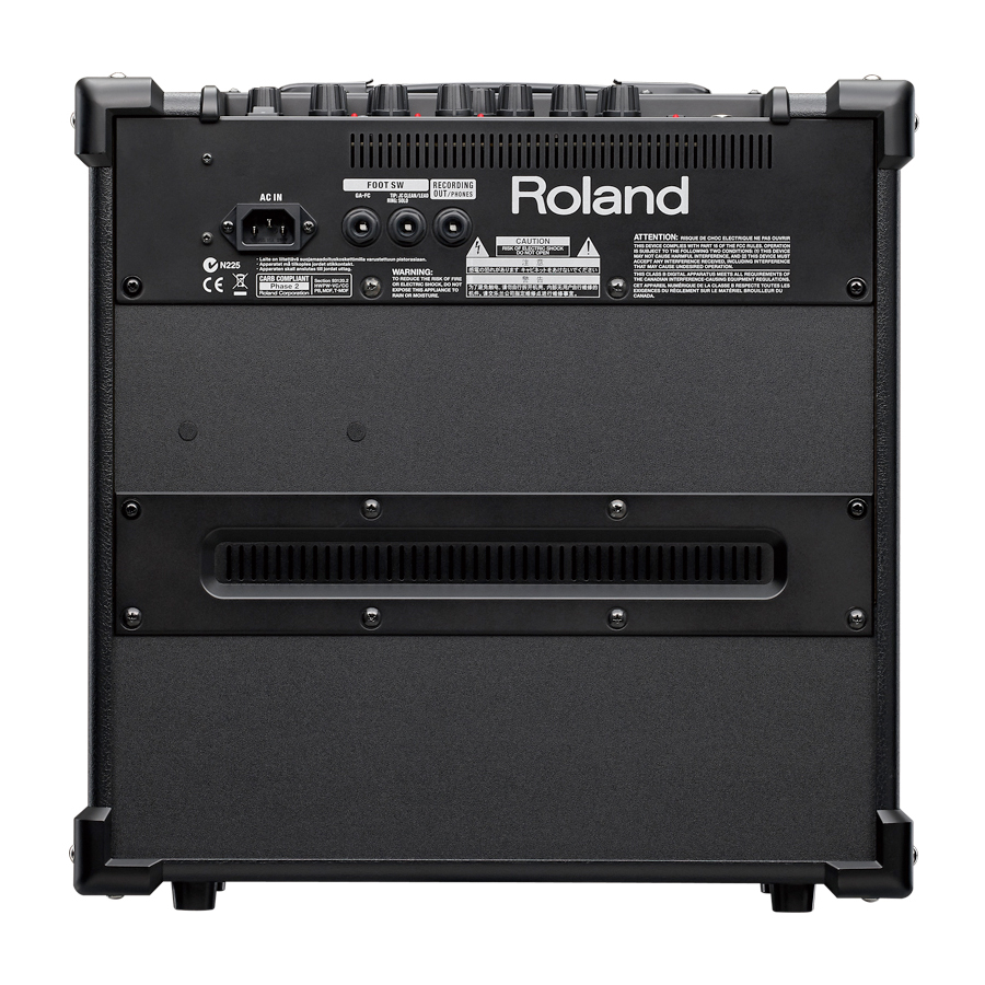 Roland CUBE-40GX Black Rear View