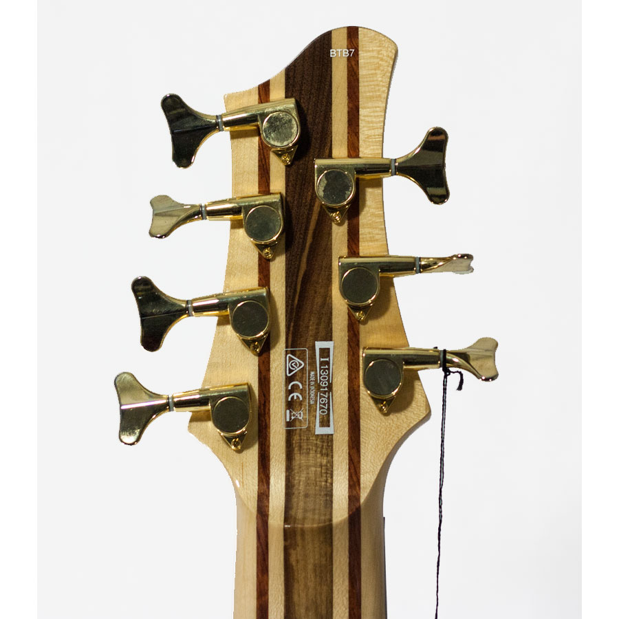Rear Headstock View