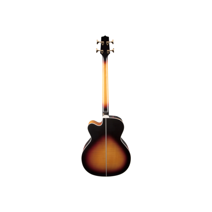 Takamine GB72CE Brown Sunburst Angled View