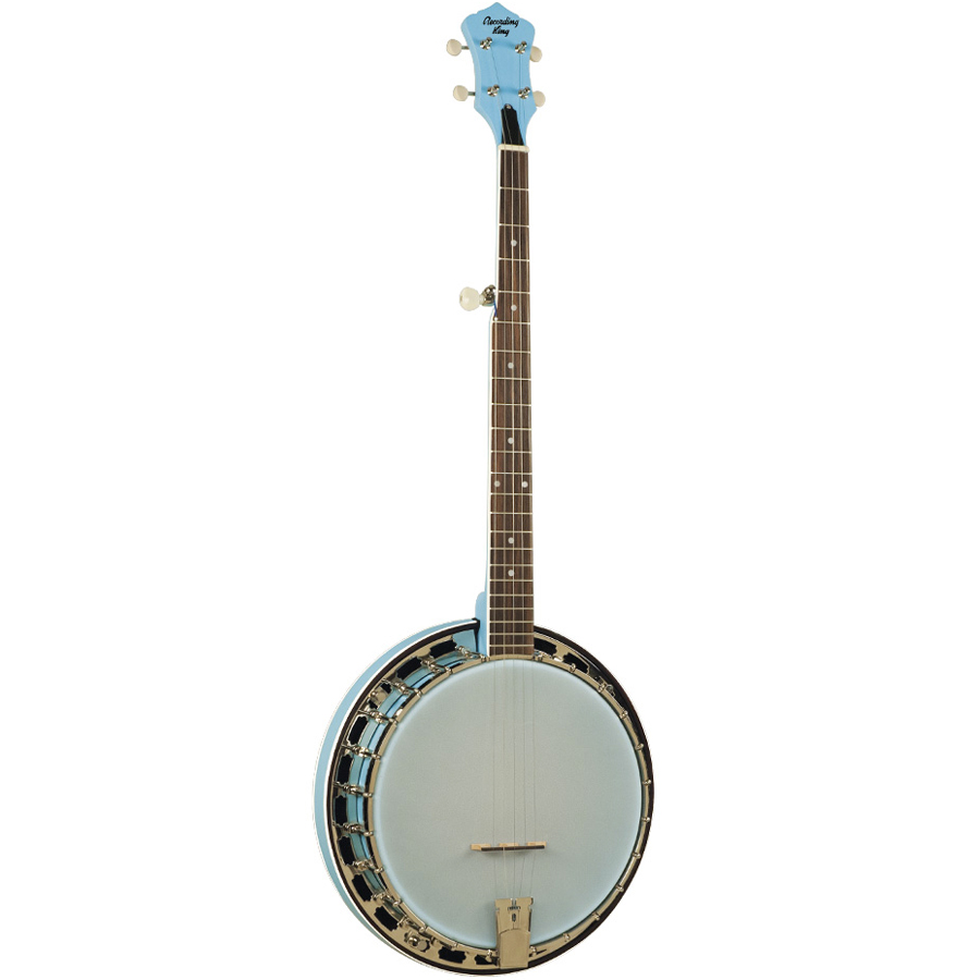 Recording King Starlight Resonator Sky Rear View