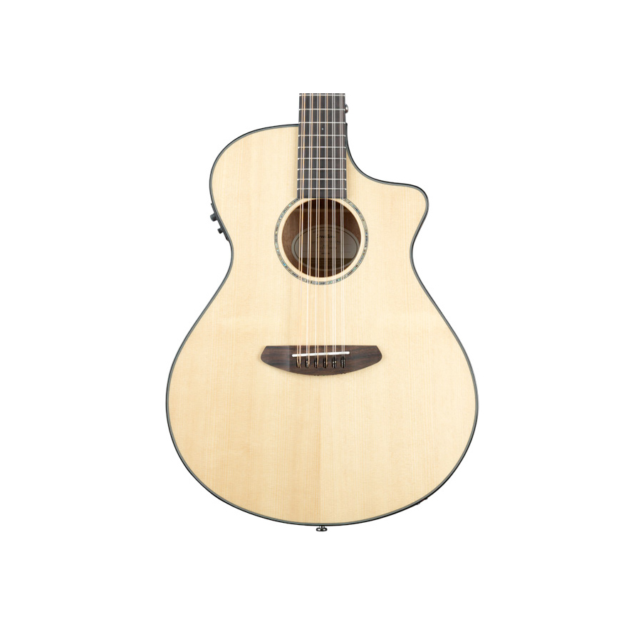 Breedlove Pursuit 12 String View 2