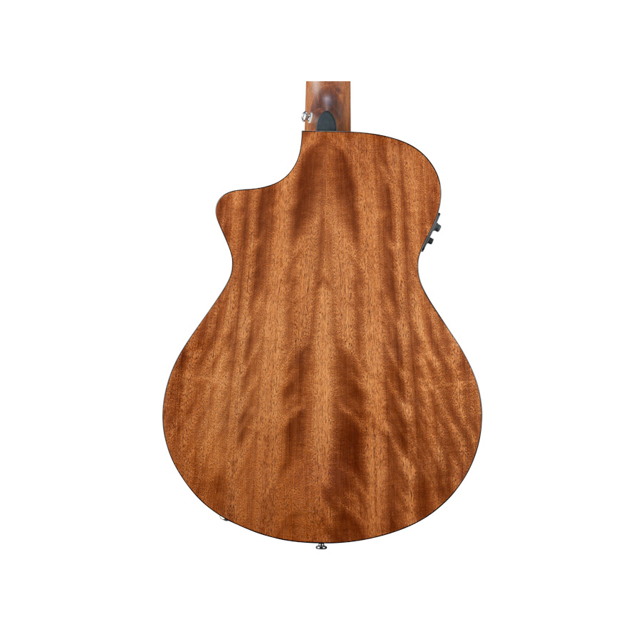 Breedlove Pursuit 12 String View 3