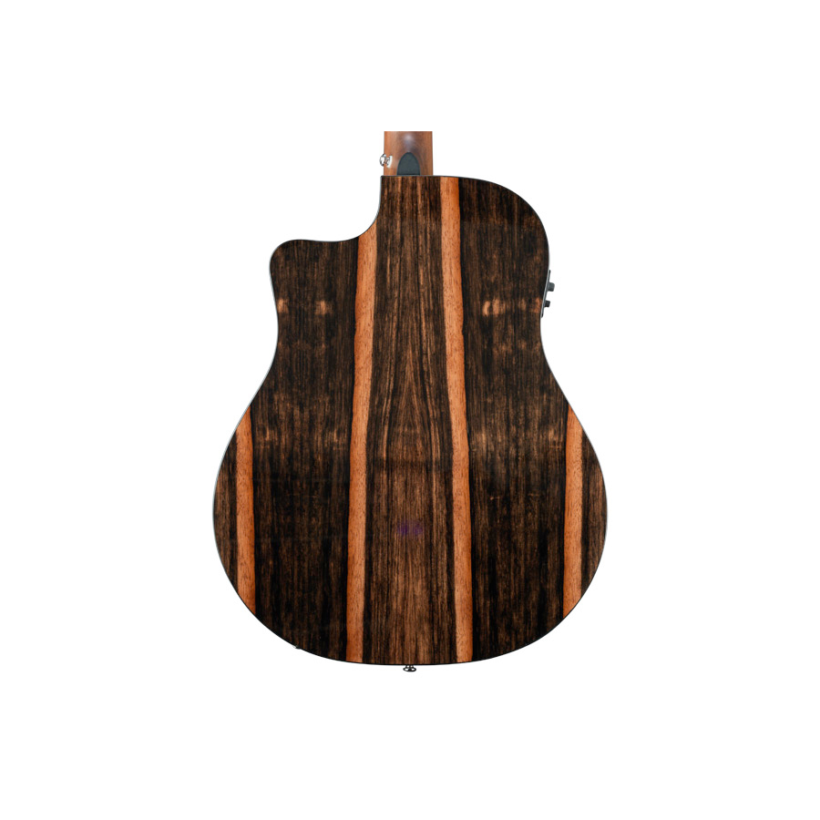 Breedlove Pursuit Dreadnought Ebony View 3
