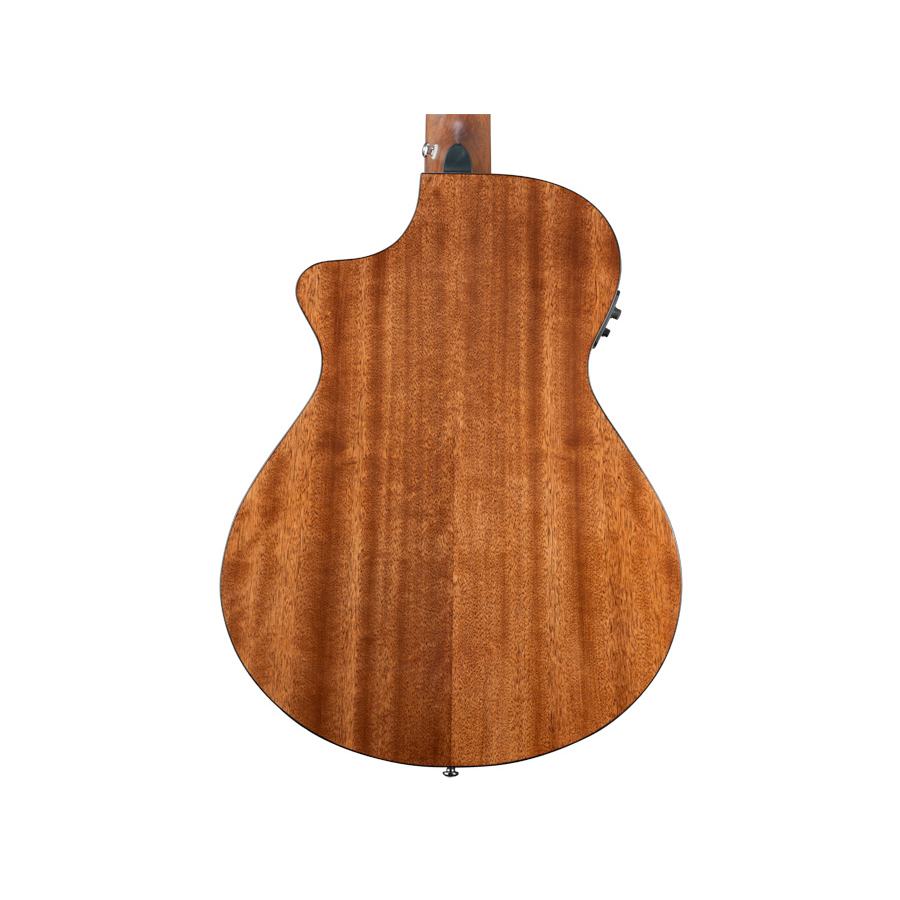 Breedlove Pursuit Nylon View 3
