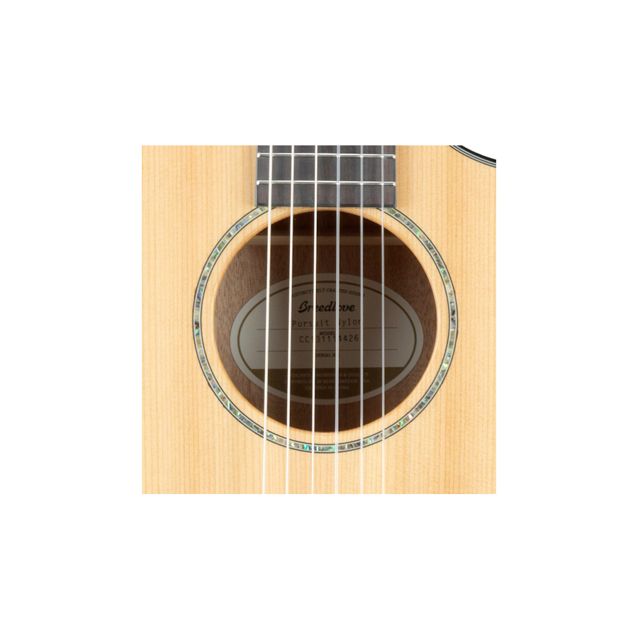 Breedlove Pursuit Nylon View 5