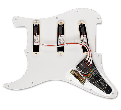 EMG David Gilmour DG20 System View 2