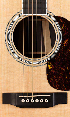 Martin HD35 Bridge View